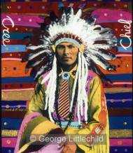 Chief John Bear